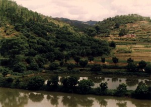 Stereoagriculture in Wuhua County, Guangdong Province. (Photo from Luo Shiming, South China Agricultural University, Guangzhou, 1991) from http://southchinaenvir.com/degraded-lands-south-chinas-untapped-resource/